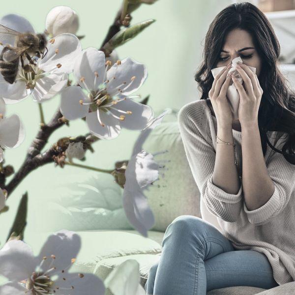 AirgoClean®110 E légtisztító allergiásoknak ideális